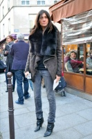 Paris-fwaw2009-emmanuelle-alt2.jpg